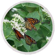 Monarch Butterfly 63 Round Beach Towel