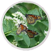 Monarch Butterfly 65 Round Beach Towel