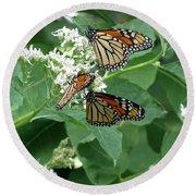 Monarch Butterfly 66 Round Beach Towel