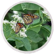 Monarch Butterfly 67 Round Beach Towel