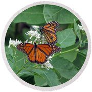 Monarch Butterfly 68 Round Beach Towel