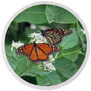 Monarch Butterfly 69 Round Beach Towel