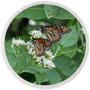 Monarch Butterfly 70 Round Beach Towel
