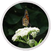 Monarch Butterfly 71 Round Beach Towel