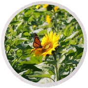 Monarch Butterfly And Guest Round Beach Towel
