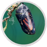 Monarch Butterfly Ready To Emerge Round Beach Towel