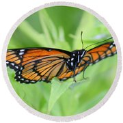 Monarch Butterfly Rocking Chair Round Beach Towel