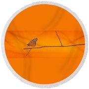 Monarch Round Beach Towel