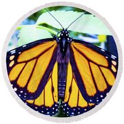 Monarch I Round Beach Towel