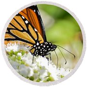 Monarch Moment Round Beach Towel