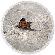 Monarch On The Beach Round Beach Towel