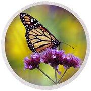 Monarch With Sunflower Round Beach Towel