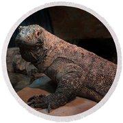 Monitor Lizard Round Beach Towel