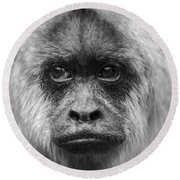 Monkey Eyes Round Beach Towel