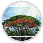 Monkey Pod Trees - Kona Hawaii Round Beach Towel