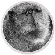 Monkey's Eyes Round Beach Towel