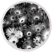 Monochrome Asters Round Beach Towel