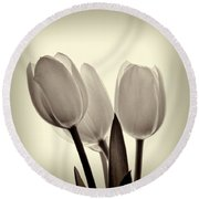 Monochrome Tulips With Vignette Round Beach Towel