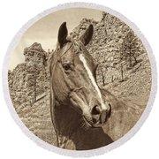 Montana Horse Portrait In Sepia Round Beach Towel