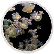 Monterey Aquarium Jellyfish Round Beach Towel