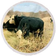 Moo Cow Munch Round Beach Towel