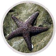 Moody Starfish I Round Beach Towel
