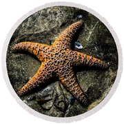 Moody Starfish II Round Beach Towel