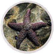 Moody Starfish IIi Round Beach Towel