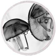 Moon Jellyfish - Black And White Round Beach Towel