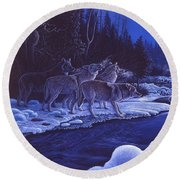 Moonlight Visitors Round Beach Towel