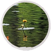 Moore State Park Lily Pond 2 Round Beach Towel
