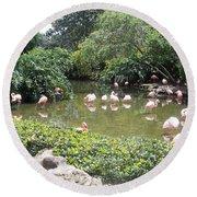 More Pink Flamingos Round Beach Towel