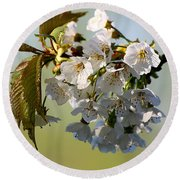More Spring Flowers Round Beach Towel