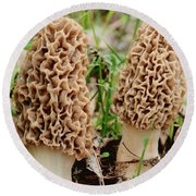 Morel Twins Round Beach Towel