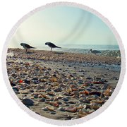 Morning Beach Preen Round Beach Towel