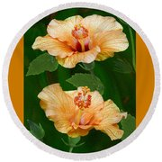 Morning Blooms - Hibiscus Round Beach Towel