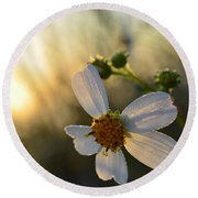 Morning Flower Round Beach Towel