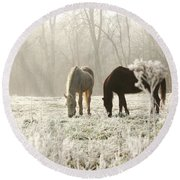 Morning Frost Round Beach Towel
