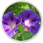 Morning Glory Couple Or 2 Purple Ipomeas Round Beach Towel