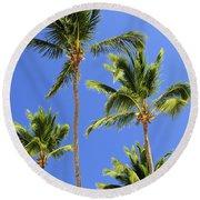 Morning Palms Round Beach Towel