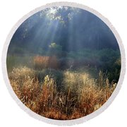 Morning Rays Through Live Oaks Round Beach Towel