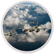 Mosquitos Above Clouds Round Beach Towel
