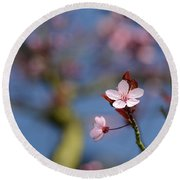 Moss And Blossoms Round Beach Towel