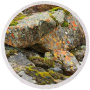 Moss And Lichens In The Scottish Highlands Round Beach Towel