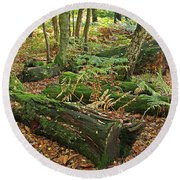 Moss Covered Logs On The Forest Floor Round Beach Towel