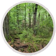 Moss Covered Trees In Forest, Lord Round Beach Towel