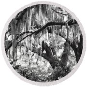 Moss In A Magical Land Round Beach Towel