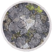 Mossy Mouldy Rock Texture Round Beach Towel