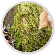 Mossy Rock Abstract 2013 Round Beach Towel