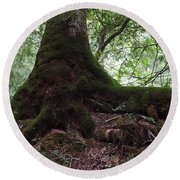 Mossy Roots Round Beach Towel